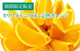 完熟オレンジ