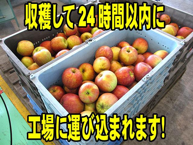りんごの鮮度を大事にしています